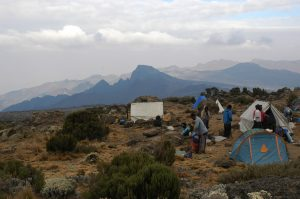 kilimanjaro-trekking-shira-hut-dag-2