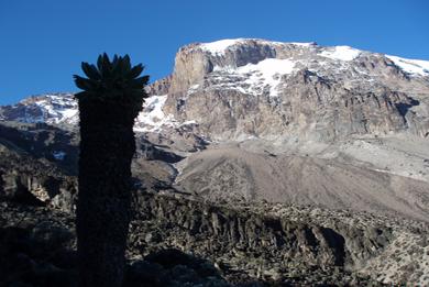 Nedtælling til Kilimanjaro